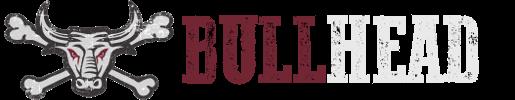 Bullhead - Grunge / Punkrock Band aus München